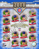 2008 Chicago Cubs Central Division Champions Photo