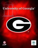 2008 University of Georgia Team Logo Photo