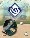2008 Tampa Bay Rays Team Logo Photo
