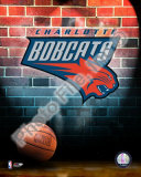 Charlotte Bobcats 2006 NBA Logo Photo