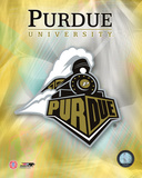 2008 Purdue University Logo Photo