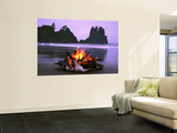 Bonfire on the Beach, Point of the Arches, Shi-Shi Beach, Washington State, USA Wall Mural