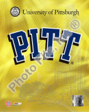 University of Pittsburgh Panthers 2008 Logo Photo