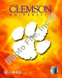 2008 Clemson University Team Logo Photo