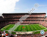 Cleveland Browns Stadium 2008 Photo