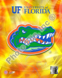 University of Florida Gators 2008 Logo Photo