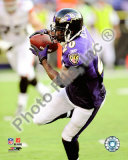 Ed Reed Photo
