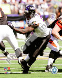 Terrell Suggs Photo