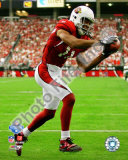 Larry Fitzgerald 2008 NFC Championship Photo