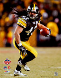 Troy Polamalu 2008 AFC Championship Photo