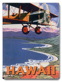 Hawaii Sight Seeing by Air Wood Sign