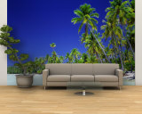 Beach with Palm Trees, Bora Bora, Tahiti Wall Mural – Large