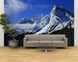Rocky Mountains, Winter, Alberta, Canada Wall Mural – Large