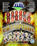 2008 Pittsburgh Steelers SuperBowl XLIII Champions Photo