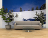Jackson Hole, Wyoming, USA Wall Mural – Large