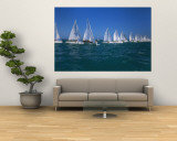 Sailboat Racing in the Ocean, Key West, Florida, USA Wall Mural