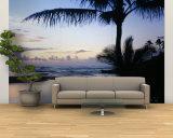 Palm Tree on the Beach, Wailua Bay, Kauai, Hawaii, USA Reproduction murale XXL