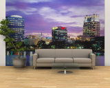 Panoramic View of an Urban Skyline at Night, Orlando, Florida, USA Wall Mural  Large