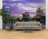 Panoramic View of an Urban Skyline at Night, Orlando, Florida, USA Wall Mural – Large