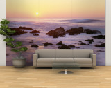 Coast, Pacific Grove, California, USA Wall Mural – Large
