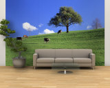 Cows, Canton Zug, Switzerland Wall Mural – Large