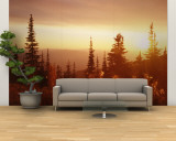 Firweed at Sunset, Whitefish, Montana, USA Wall Mural – Large