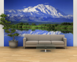 Alaska Range, Denali National Park, Alaska, USA Wall Mural – Large