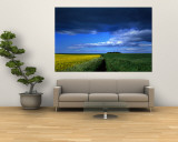 Clouds Over a Cultivated Field, Hunmanby, Yorkshire Wolds, England, United Kingdom Wall Mural
