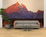 Aspens, Teton Range, Grand Teton National Park, Wyoming, USA Wall Mural – Large