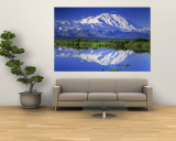 Alaska Range, Denali National Park, Alaska, USA Wall Mural
