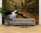 Buttermilk Creek, Ithaca, New York State, USA Wall Mural – Large