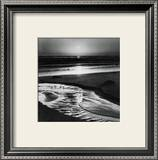 Birds on a Beach Posters van Ansel Adams