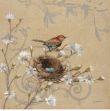 Wren and Magnolia Prints by Jill Schultz McGannon