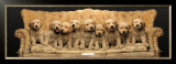 Golden Pup Line-Up Print by Keith Kimberlin