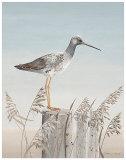 Bird's Eye Ocean View Prints by Jurgen Gottschlag