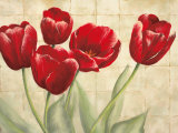 Red Tulips on Ivory Prints by Lauren Mckee