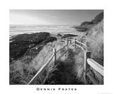 Pathway to Beach Poster por Dennis Frates