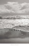 Shorebirds, Point Reyes Prints by Marty Knapp
