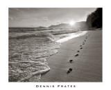 Kauai, Hawaii Poster von Dennis Frates