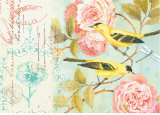 Notes of a Rose Print by Kathryn White