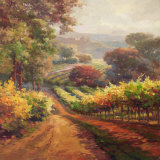 Vineyard Way Prints by Roberto Lombardi