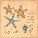 Estrellas de mar Pósters por Stephanie Marrott