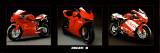Ducati Bikes Print