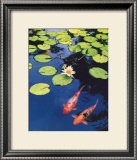 Koi Pond II Poster by Maureen Love