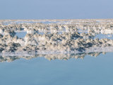 Picturesque View of Mineral Rocks in the Dead Sea in Israel Photographic Print