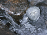 Stone with Word Smile in Water of Tranquil Stream Lámina fotográfica