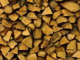 Pile of Cut Logs for Fire Wood Photographic Print