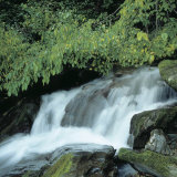 Picturesque and Serene Water Cascading Down Waterfall in Calm Woods Photographic Print