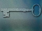 Binary Code on Skeleton Key Reprodukcja zdjęcia