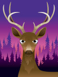Portrait of Deer with Antlers at Sunset Prints